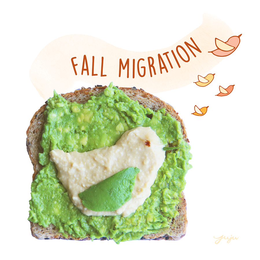 Juju Sprinkles Toast Avocado Chick Fall Migration