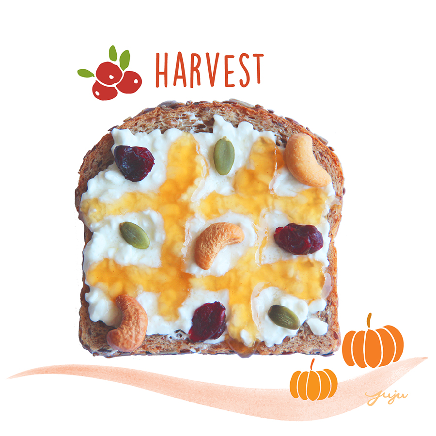 Juju Sprinkles Toast Fall Cranberry Pumpkin Harvet